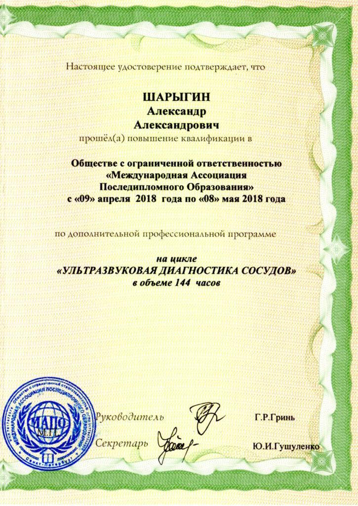 Шарыгин Александр УЗИ сосудов
